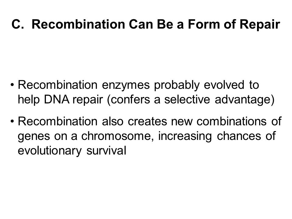 C. Recombination Can Be a Form of Repair