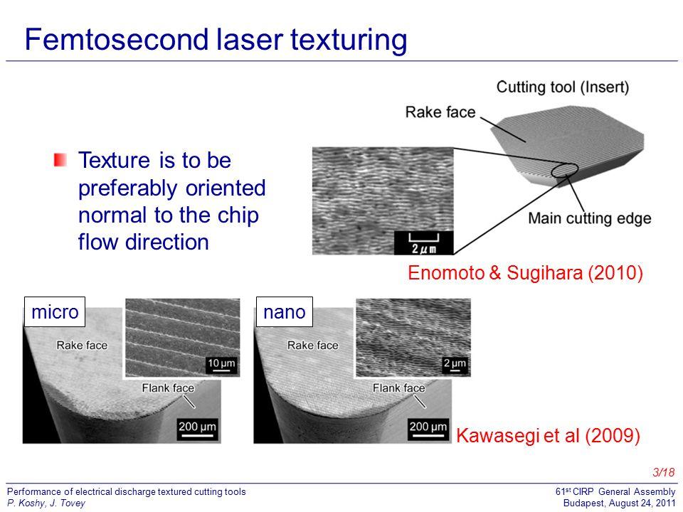 Femtosecond laser texturing