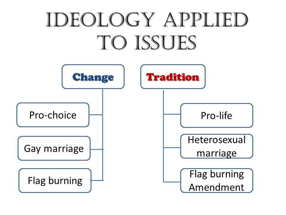 Ideology Applied to Issues