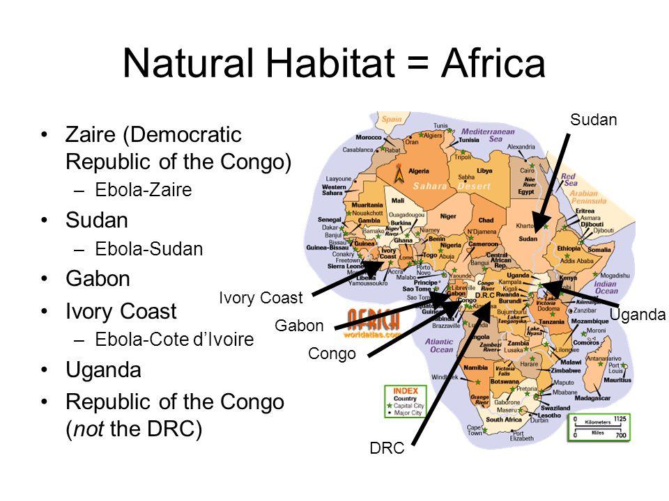 Natural Habitat = Africa