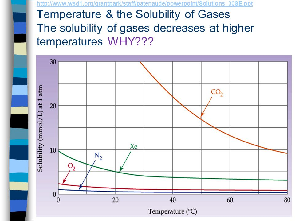 http://www.wsd1.org/grantpark/staff/patenaude/powerpoint/Solutions_30SE.ppt Temperature & the Solubility of Gases The solubility of gases decreases at higher temperatures WHY