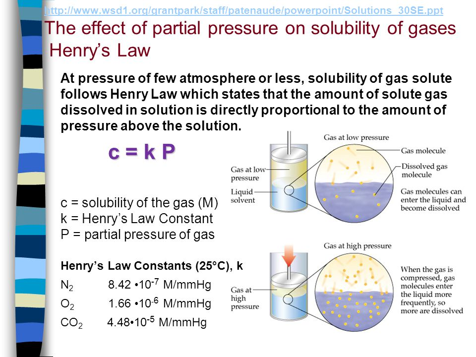 http://www.wsd1.org/grantpark/staff/patenaude/powerpoint/Solutions_30SE.ppt The effect of partial pressure on solubility of gases Henry's Law