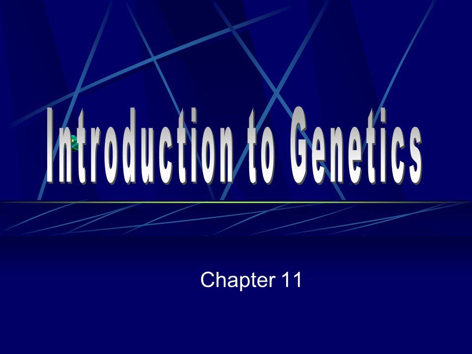 Introduction to Genetics