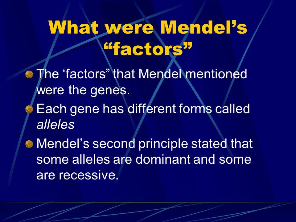 What were Mendel's factors