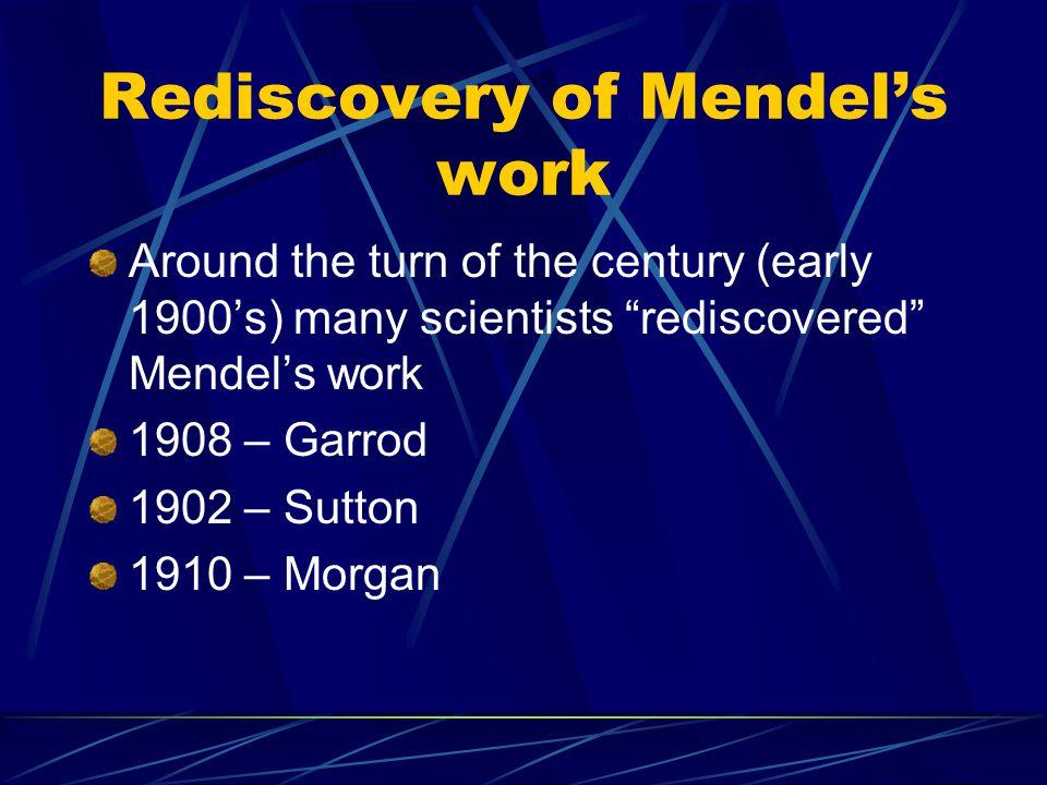 Rediscovery of Mendel's work