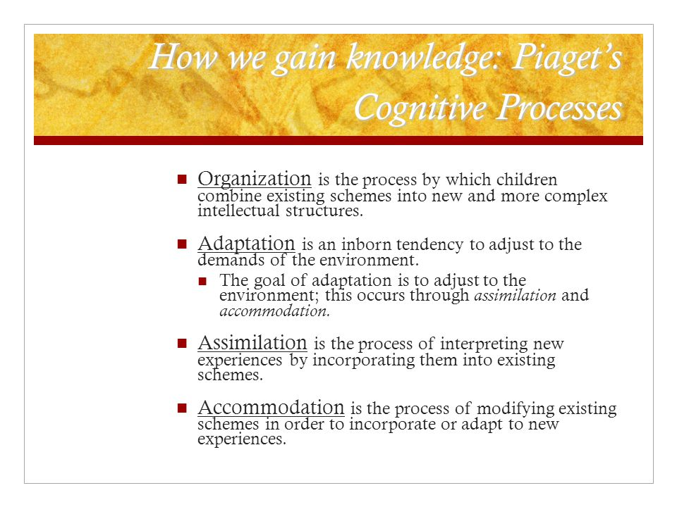 How we gain knowledge: Piaget's Cognitive Processes