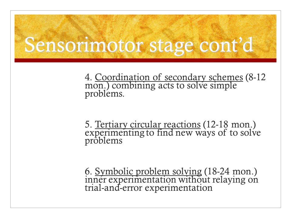Sensorimotor stage cont'd