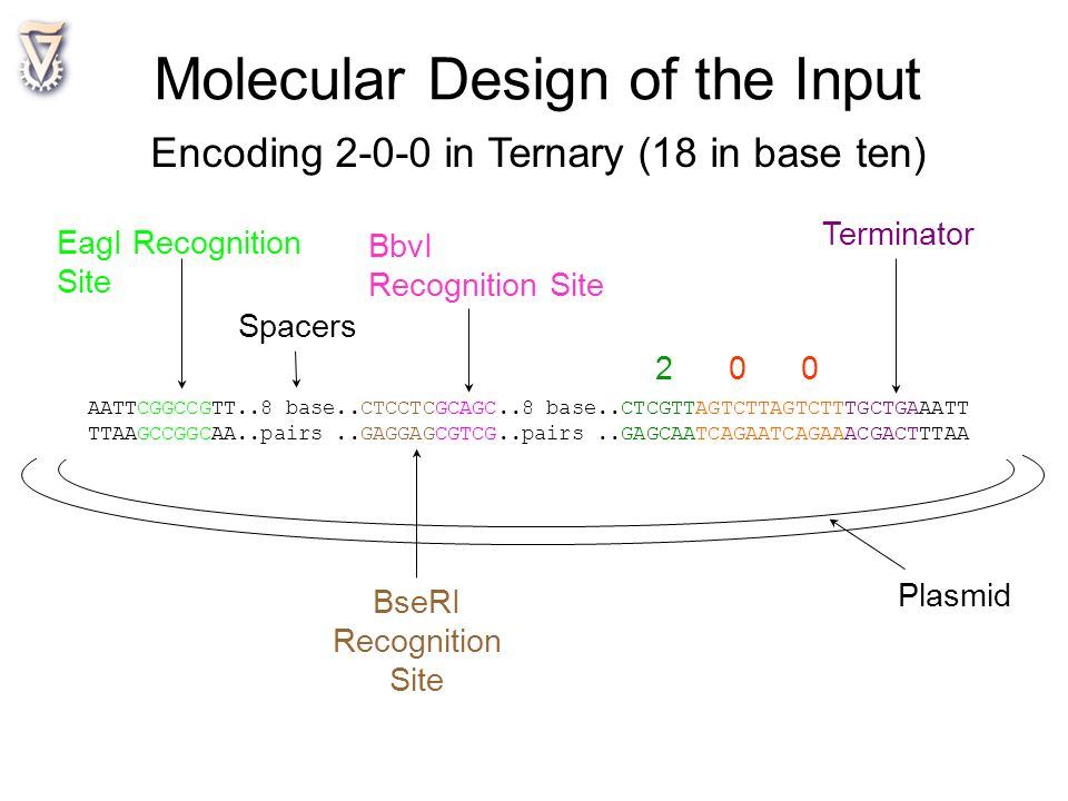 Molecular Design of the Input