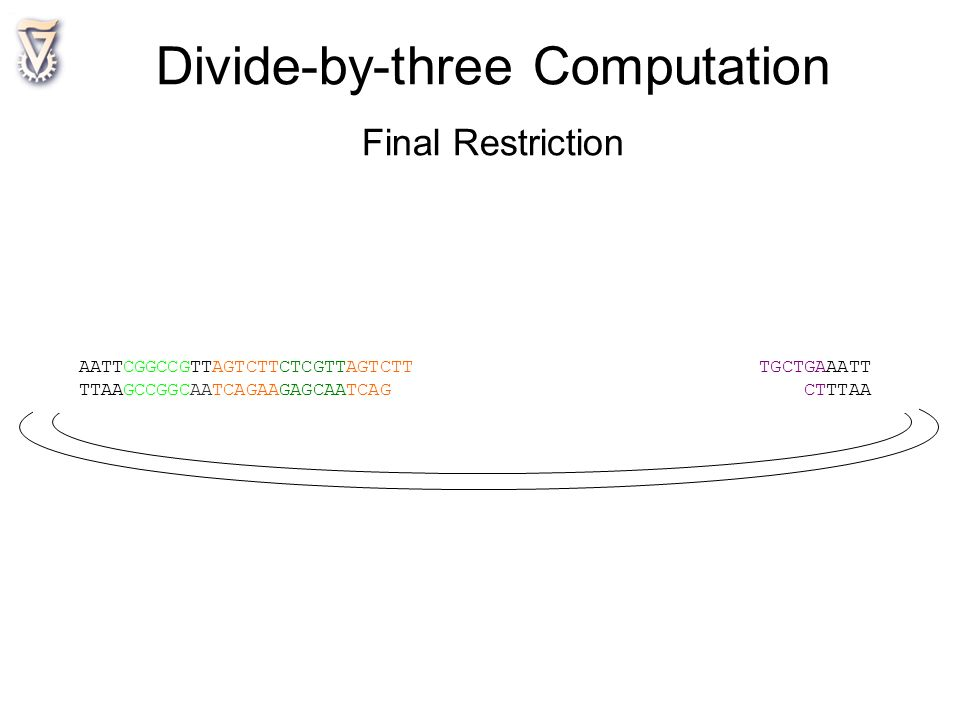 Divide-by-three Computation