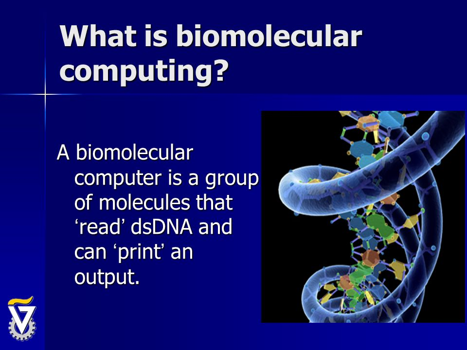 What is biomolecular computing