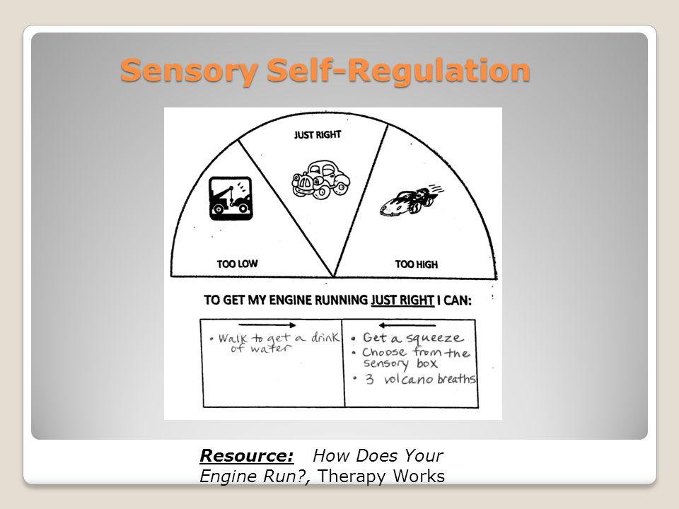 Sensory Self-Regulation