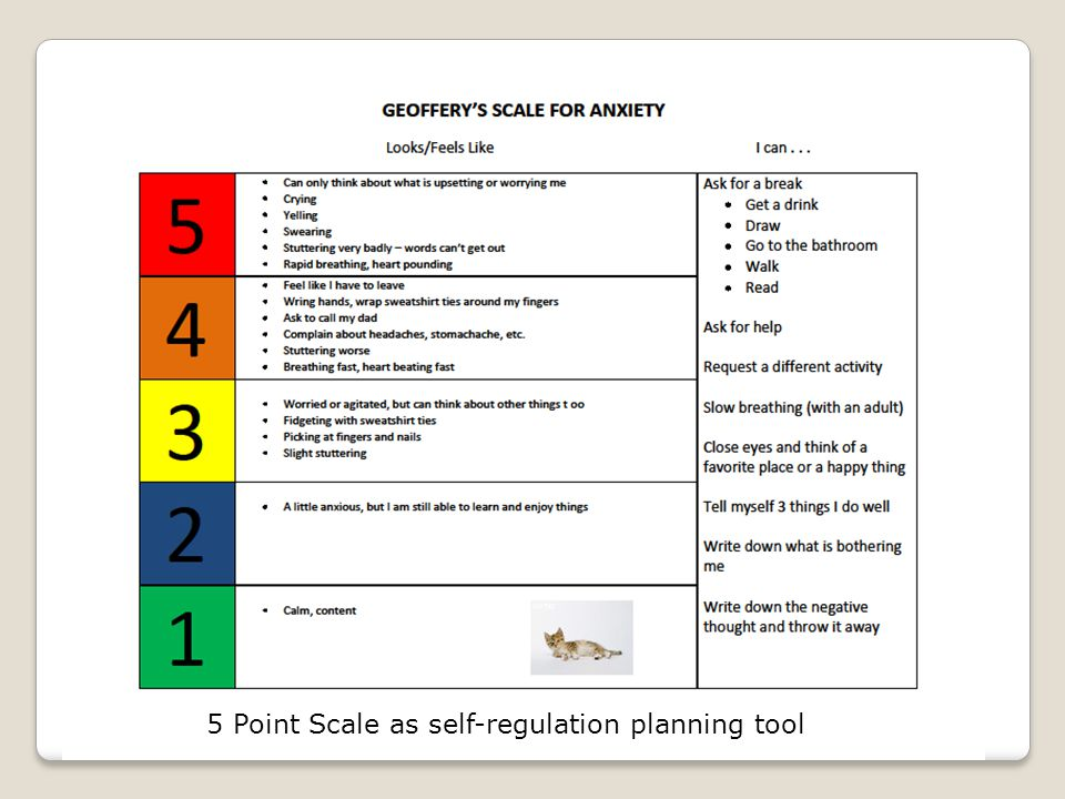 5 Point Scale as self-regulation planning tool