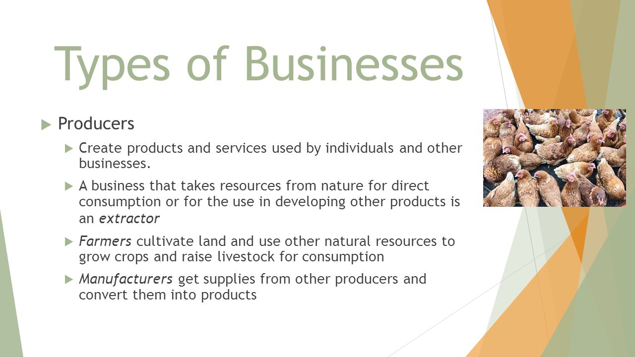 Types of Businesses Producers