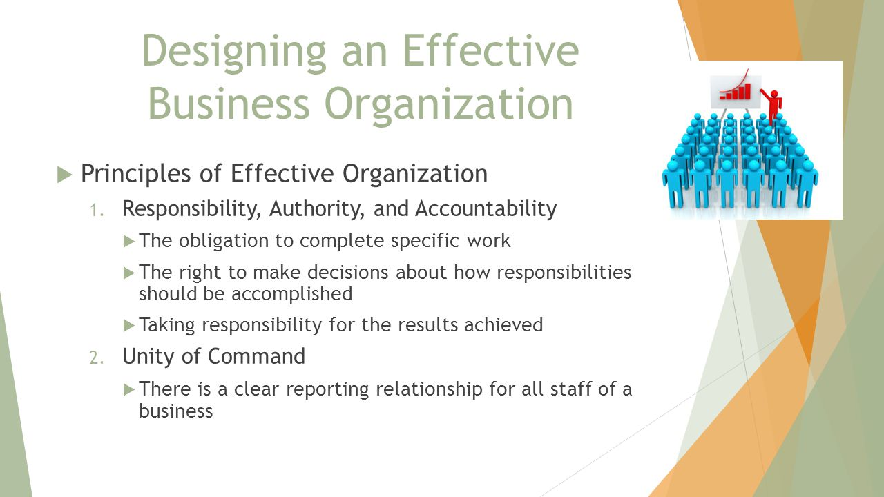 Designing an Effective Business Organization