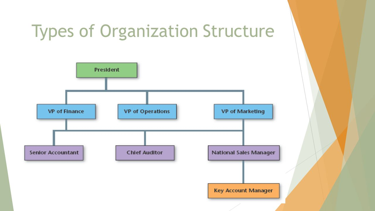 business organization presentation