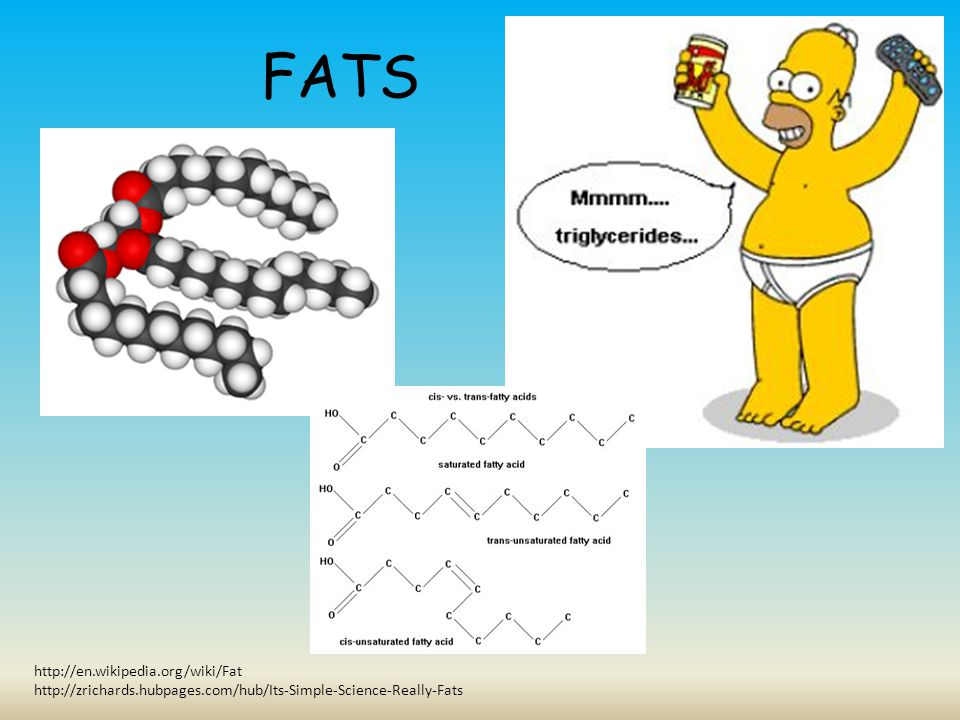 FATS http://en.wikipedia.org/wiki/Fat