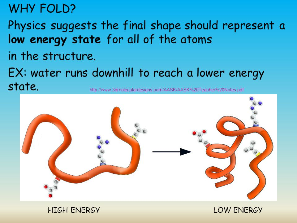 WHY FOLD Physics suggests the final shape should represent a low energy state for all of the atoms in the structure. EX: water runs downhill to reach a lower energy state.