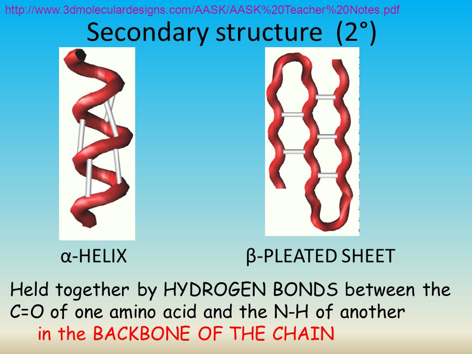 Secondary structure (2°)