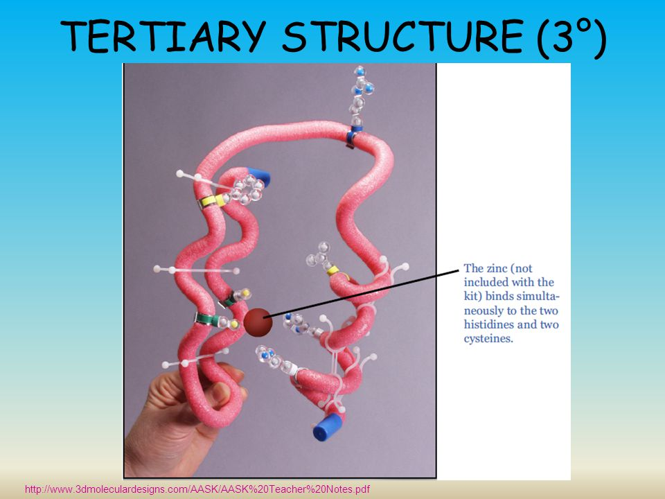 TERTIARY STRUCTURE (3°)