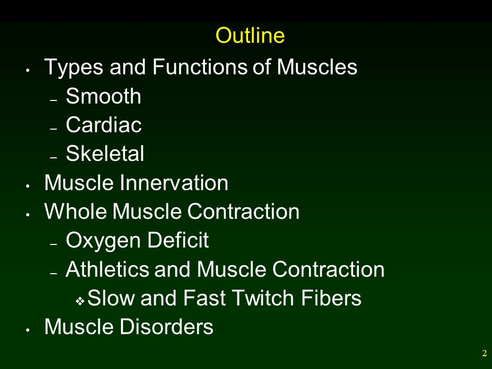 Outline Types and Functions of Muscles. Smooth. Cardiac. Skeletal. Muscle Innervation. Whole Muscle Contraction.