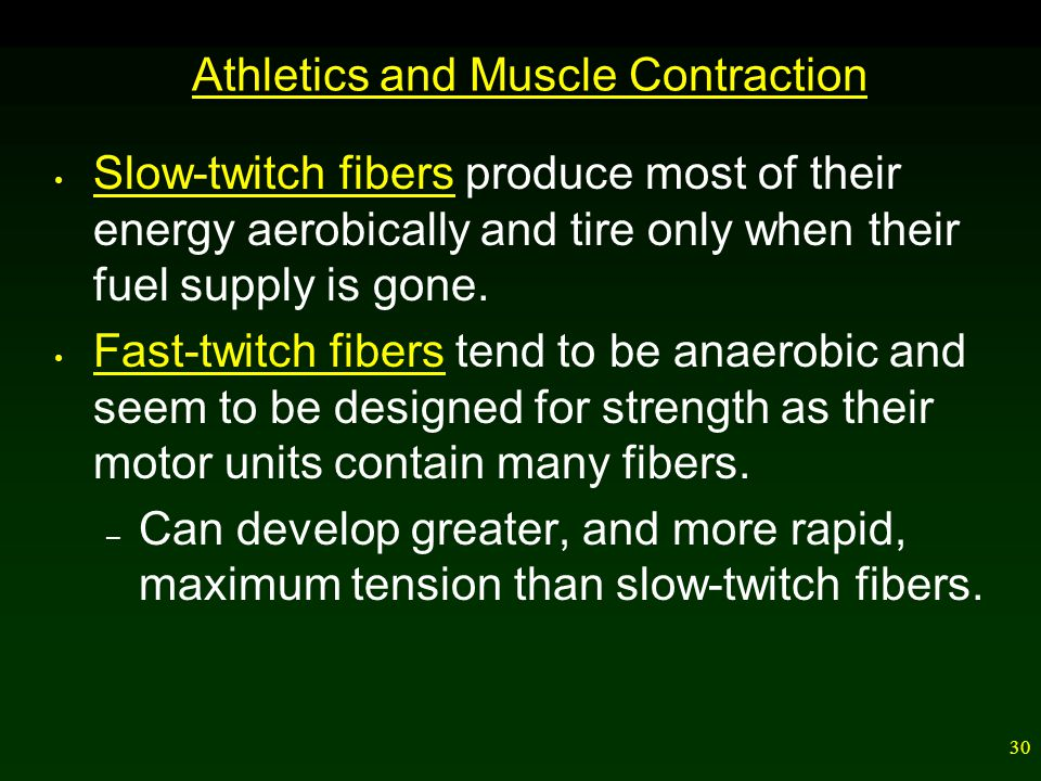 Athletics and Muscle Contraction