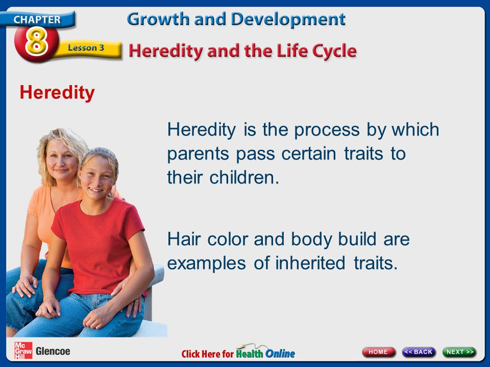 Hair color and body build are examples of inherited traits.