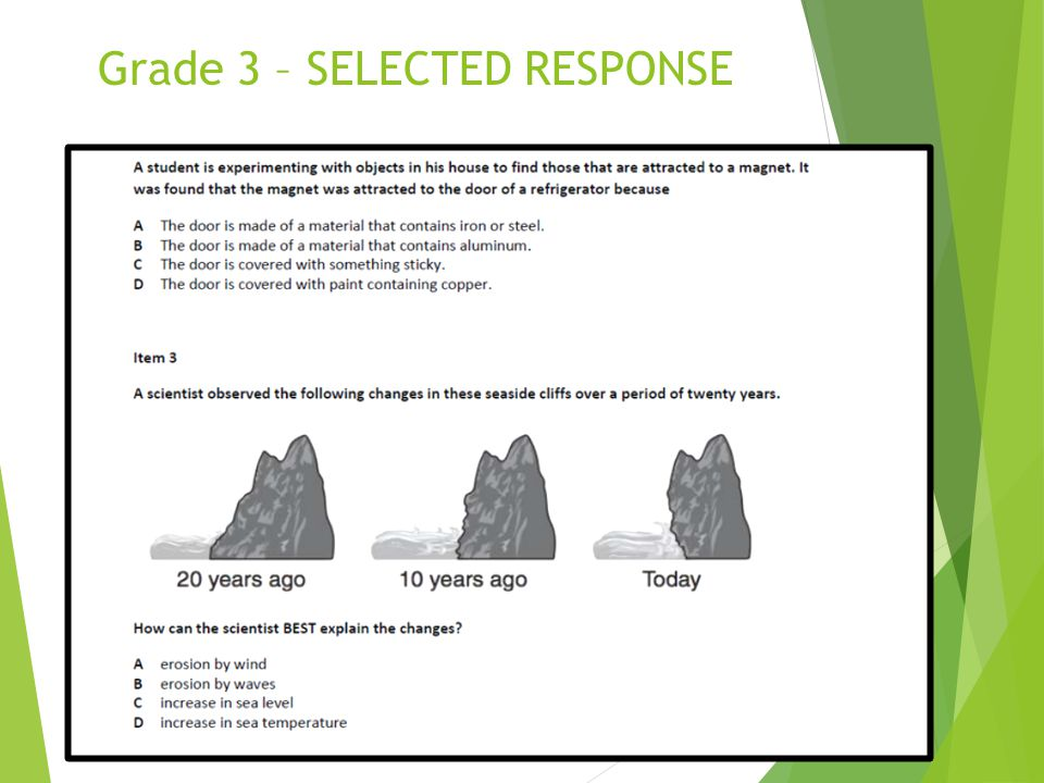 Grade 3 – SELECTED RESPONSE