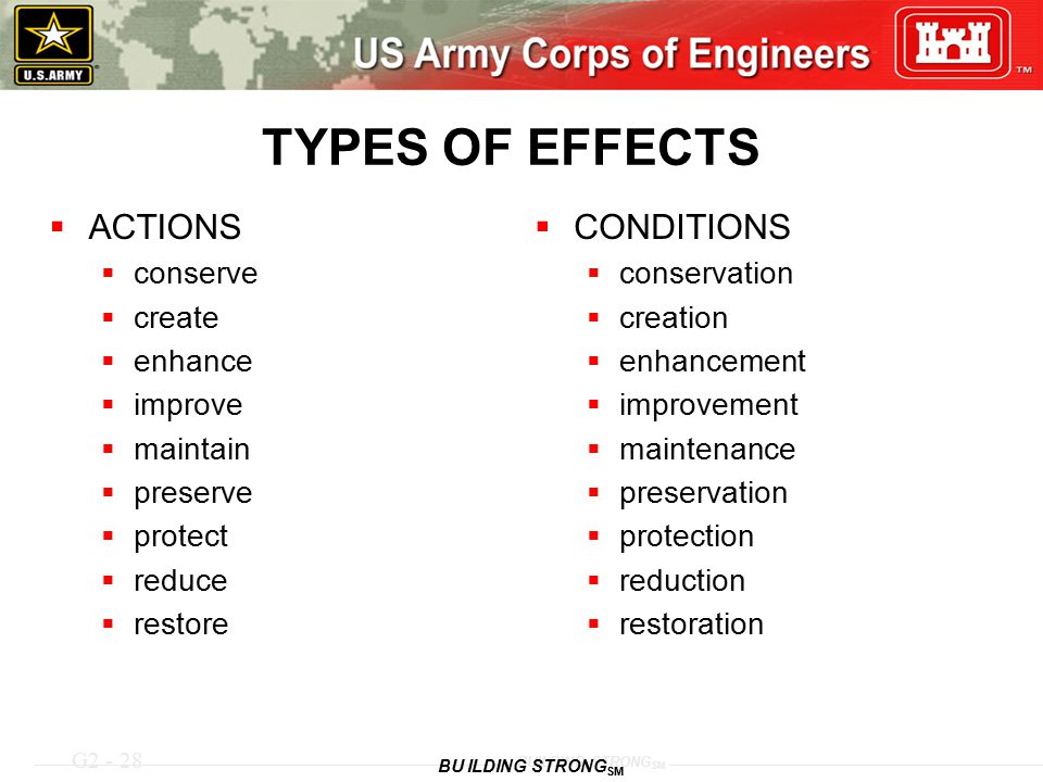 TYPES OF EFFECTS ACTIONS CONDITIONS conserve create enhance improve