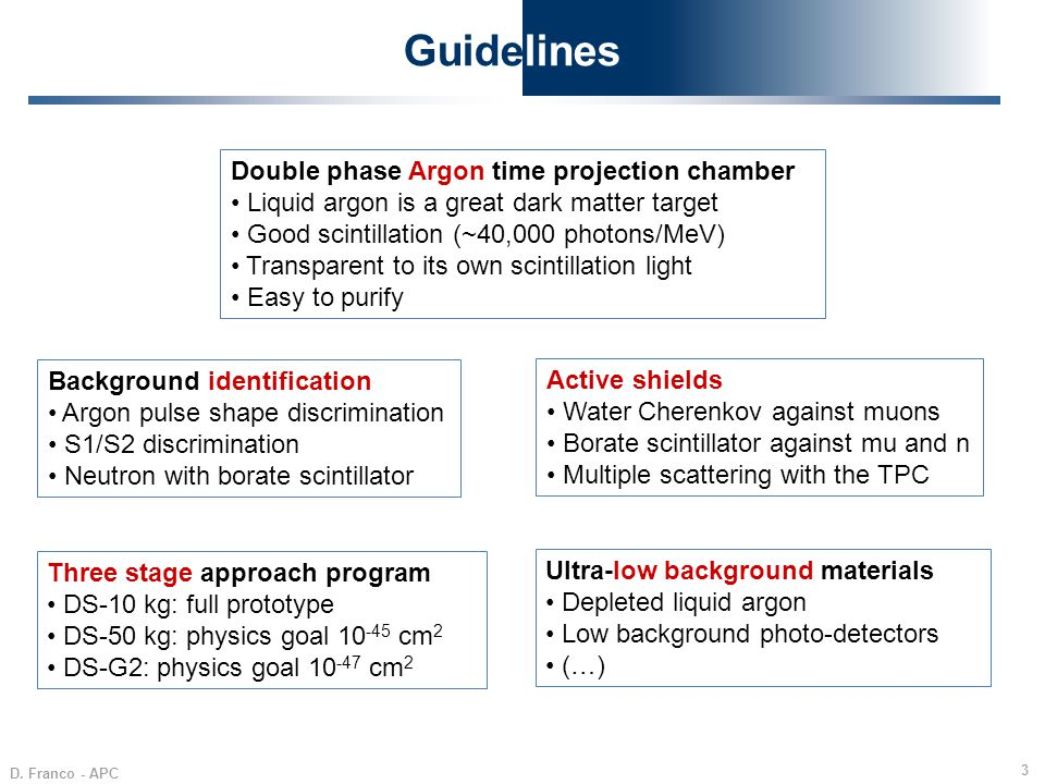 Guidelines Double phase Argon time projection chamber