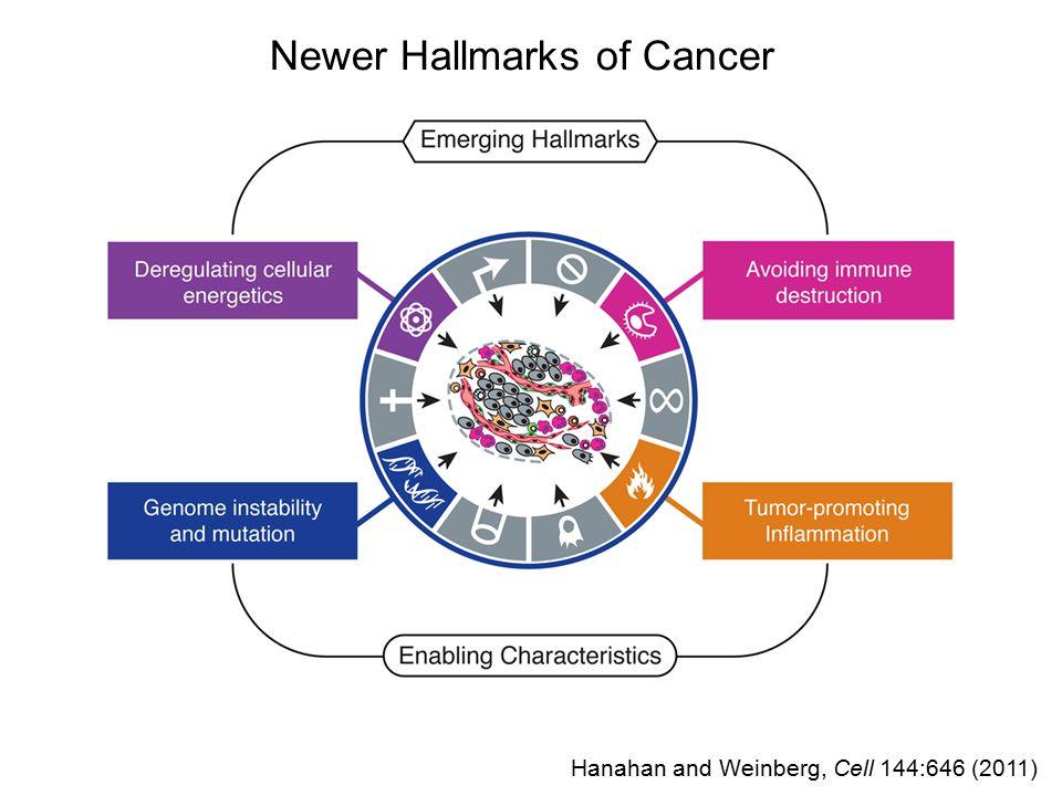 Newer Hallmarks of Cancer