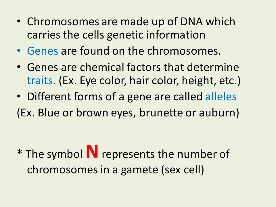 Chromosomes are made up of DNA which carries the cells genetic information