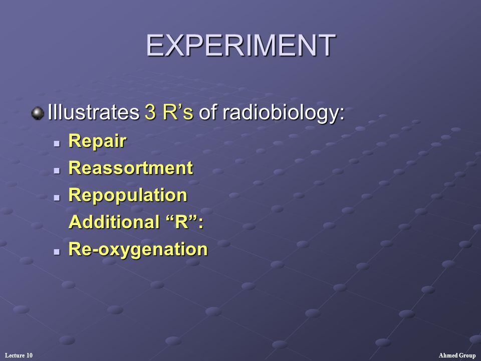 EXPERIMENT Illustrates 3 R's of radiobiology: Repair Reassortment