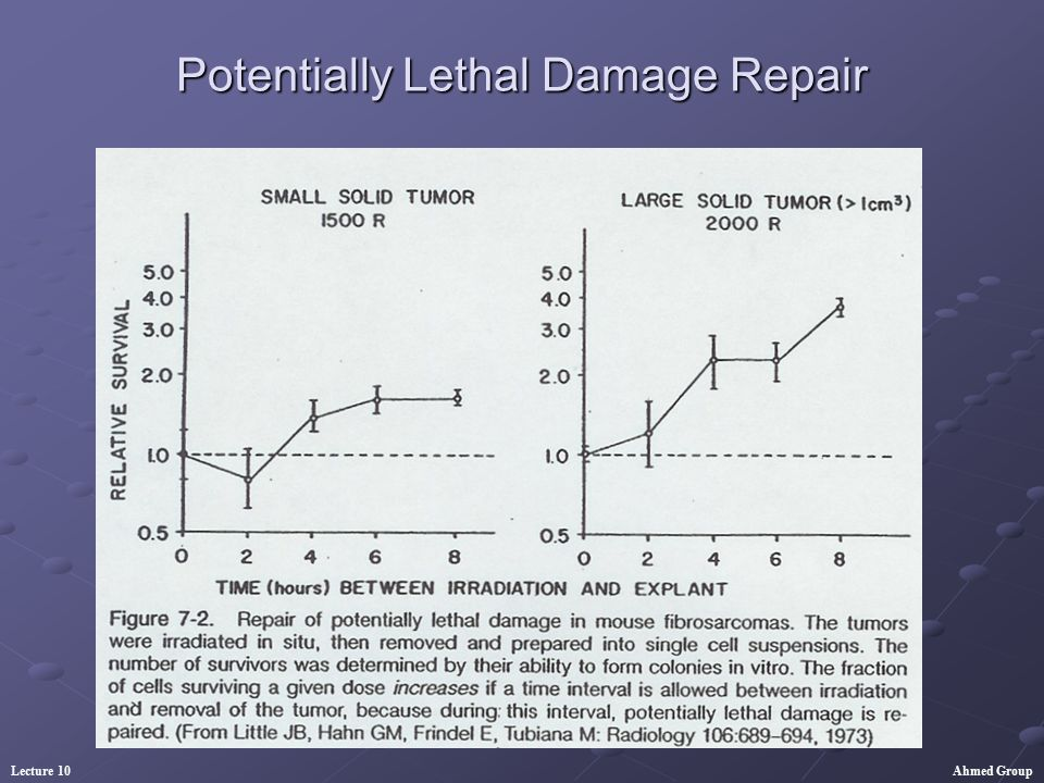Potentially Lethal Damage Repair