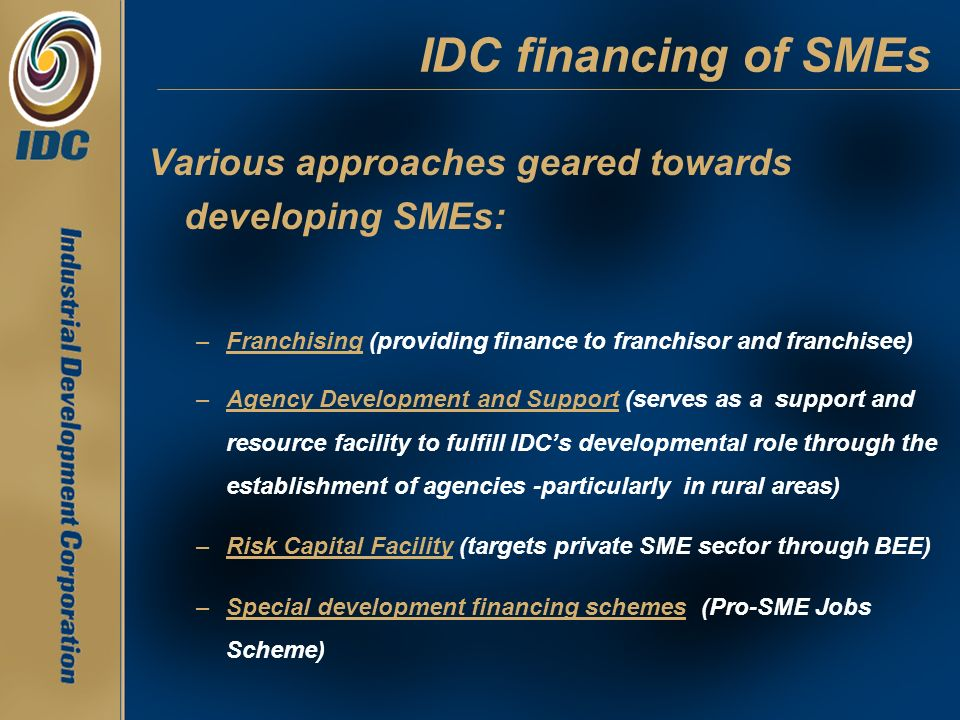 IDC financing of SMEs Various approaches geared towards developing SMEs: Franchising (providing finance to franchisor and franchisee)