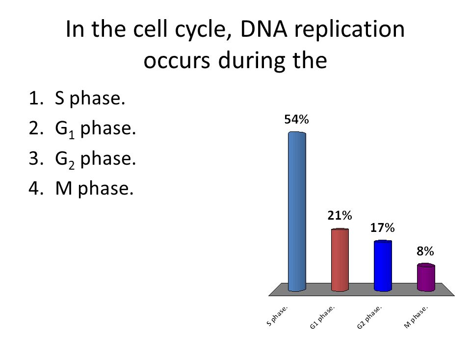 In the cell cycle, DNA replication occurs during the