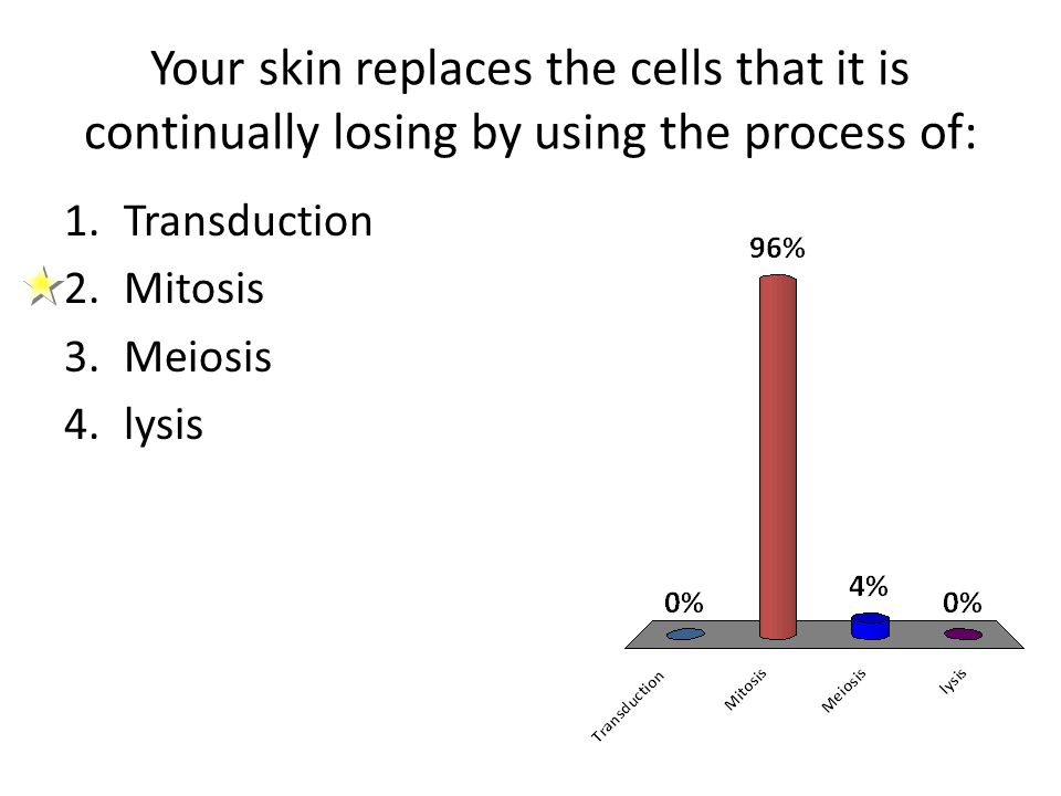 Your skin replaces the cells that it is continually losing by using the process of: