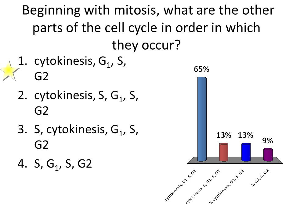Beginning with mitosis, what are the other parts of the cell cycle in order in which they occur