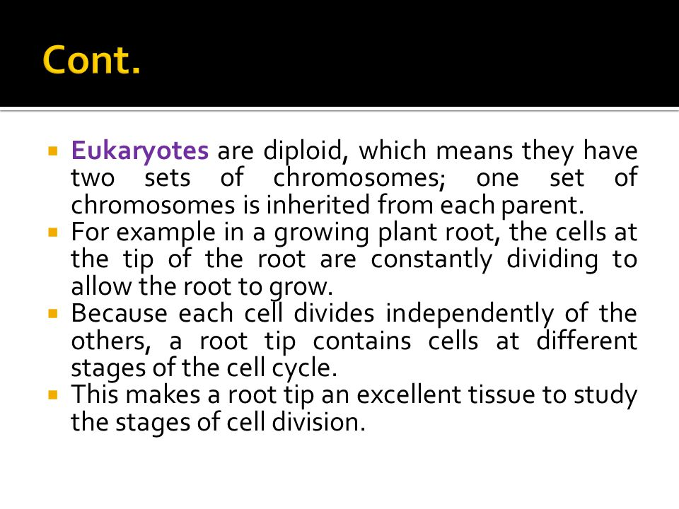 Cont. Eukaryotes are diploid, which means they have two sets of chromosomes; one set of chromosomes is inherited from each parent.