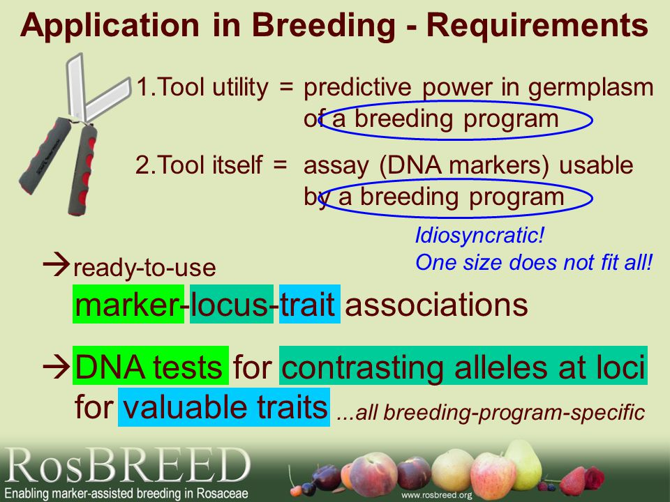 Application in Breeding - Requirements