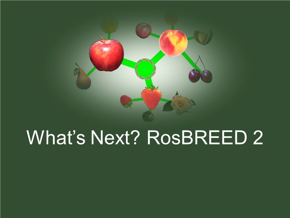 What's Next RosBREED 2