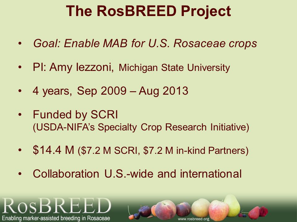 The RosBREED Project Goal: Enable MAB for U.S. Rosaceae crops