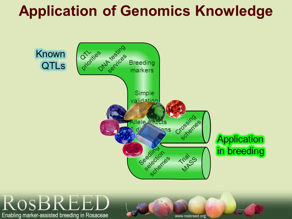 Application of Genomics Knowledge