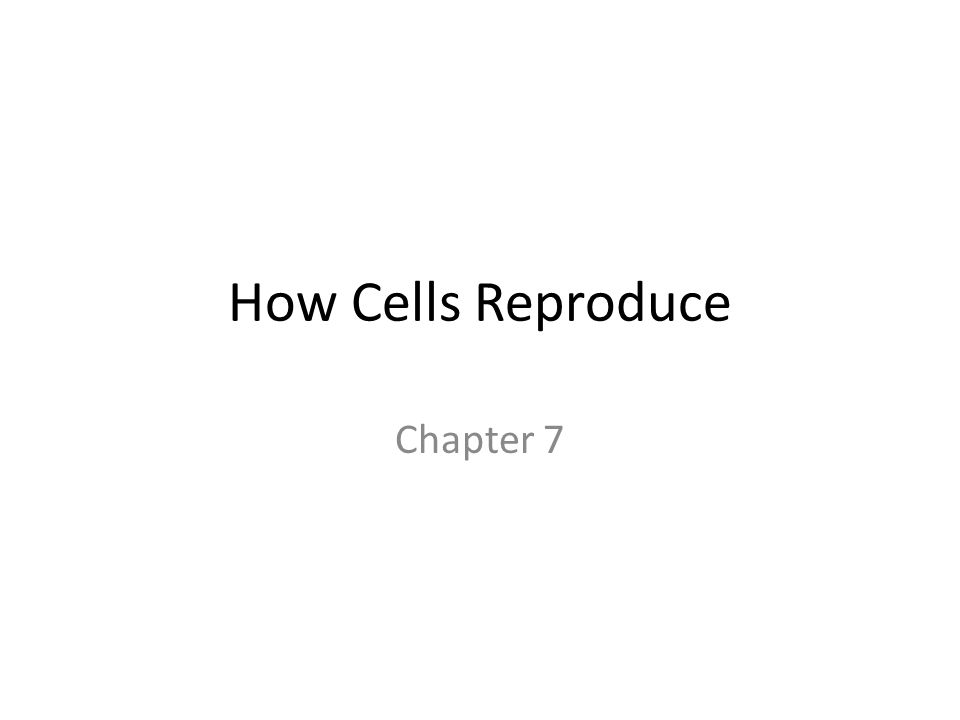 How Cells Reproduce Chapter 7