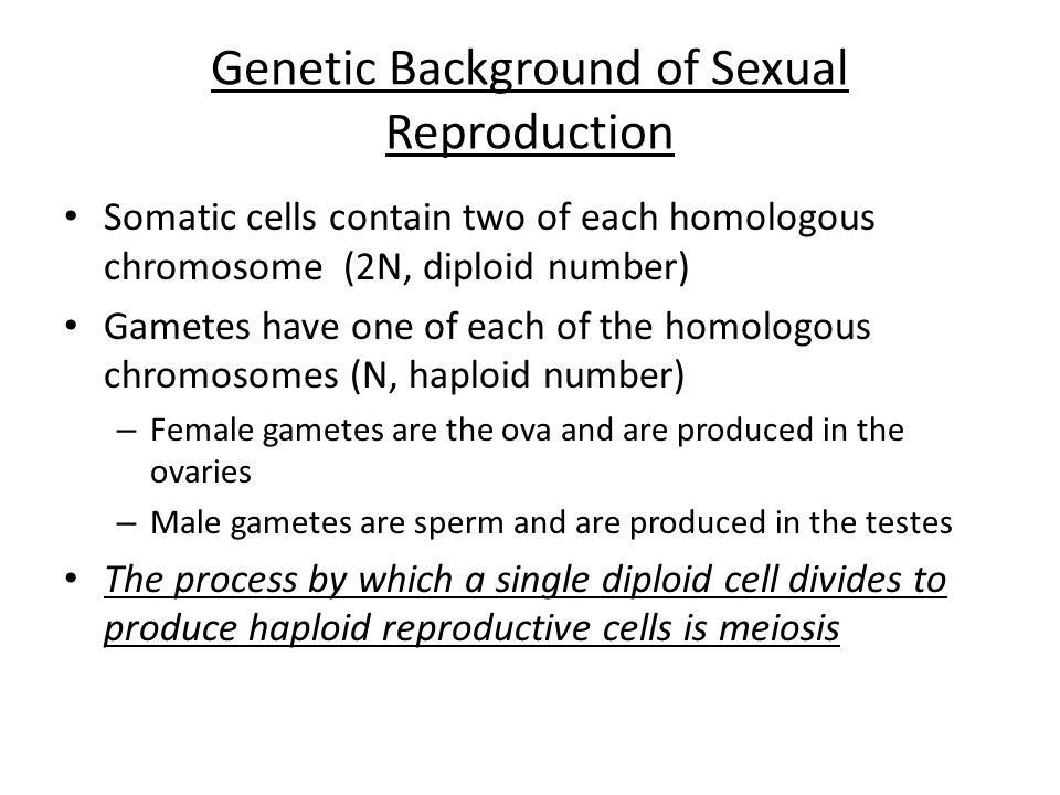 Genetic Background of Sexual Reproduction