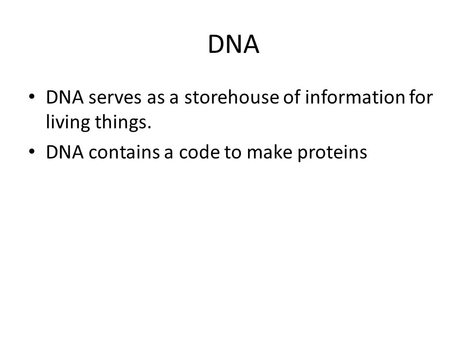 DNA DNA serves as a storehouse of information for living things.