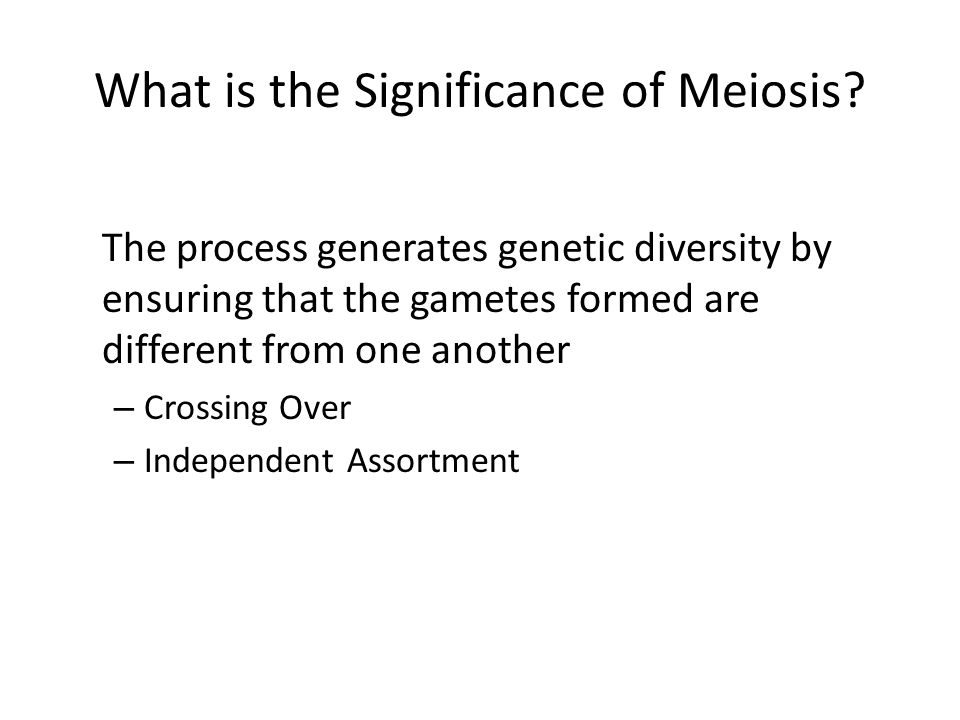 What is the Significance of Meiosis