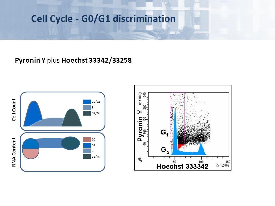 Pyronin Y plus Hoechst 33342/33258