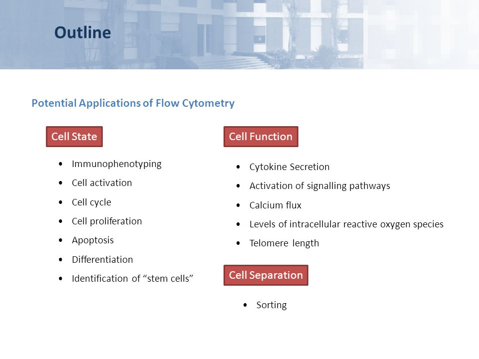 Outline Potential Applications of Flow Cytometry Cell State