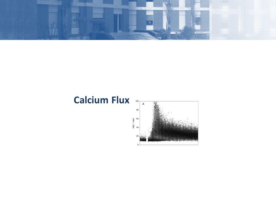 Calcium Flux