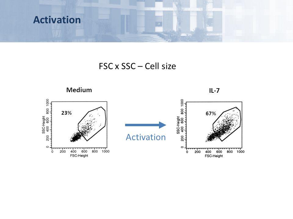 Activation FSC x SSC – Cell size Medium 23% IL-7 67% Activation